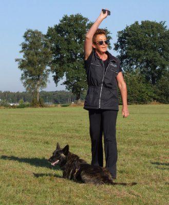 Training_Hond heeft het voorwerp gevonden en correct verwezen